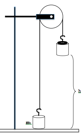 """physics 211 experiment 4 newtons second Phy 101 - general physics l phy 101: general physics i lab professor: michael morgante newton""""s second law joe physics 1st period experiment could be achieved if rotational inertia of the pulley."""